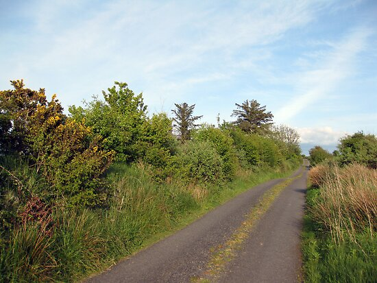 Rural Irish road by John Quinn