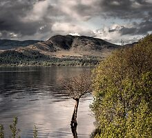 Lomond Skies by Linda  Morrison