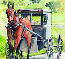 Amish Horse and Buggy by morgansartworld