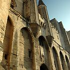 Avignon by suz01