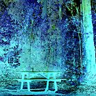 Chidlow Blue Bench  by pandab1jb