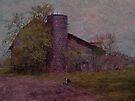 Old Barn by Shelly Harris