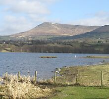 Llangorse Lake, Brecon. Image 1497. by philpipturner44