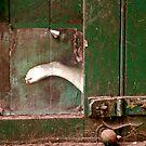 A foot in the door by Catherine Hadler