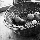 Rotten apples by CerbeR2008