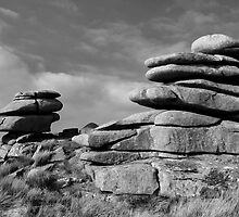 Bodmin Moor by cwwphotography