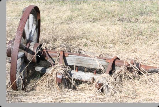 Antique Farm Wagon Wheel & Hub by Leslie van de Ligt