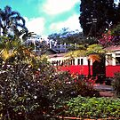Colourful Kuranda Station by georgieboy98