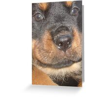 You Can't Beat Black and Tan Greeting Card