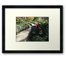 Guess who, and what is she up to? Framed Print
