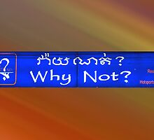 Why Not ? by Bev Pascoe