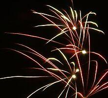 Fireworks by Ricardo Esplana Babor