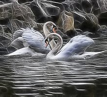 tango of the swans by Jo-PinX