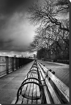 Brooklyn Heights Promenade by Carlos Restrepo