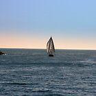 Sailing back  by sstarlightss