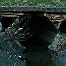 Old Bridge by terrebo