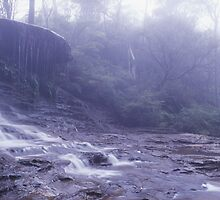 Weeping Rock - Blue Mountains, NSW by Steve Fox