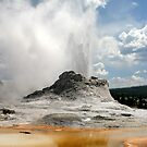 Yellowstone Geyser by Christopher Toumanian