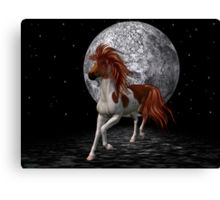 Stallion by the light of the moon Canvas Print
