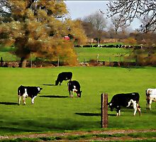 Pasture by David Buckle
