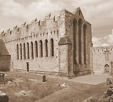 Ardfert Cathedral by John Quinn
