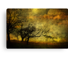 Quietude Canvas Print