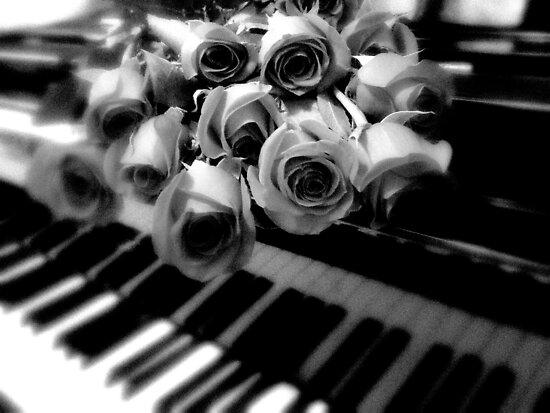 music & roses © 2009 patricia vannucci  by PERUGINA