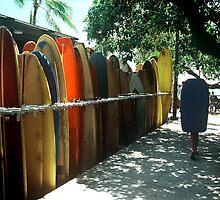 boardwalk by Mike Warman