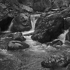 SHOE CREEK IN B&W by KSkinner