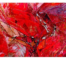Ruby Rocks Photographic Print