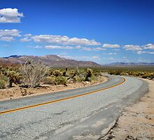 Park Boulevard Road, Joshua Tree National Park by Jo Nijenhuis
