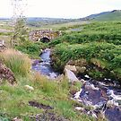 Mountain stream.----Comeragh--nr Mahon Falls,Co.Waterford. by Pat Duggan