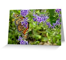 Monarch and Purple Flowers Greeting Card