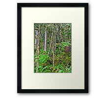 life force Framed Print