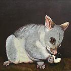 Brush Tail Possum by Jennie Liebich