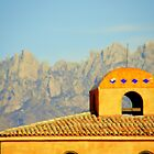 The Mesilla Valley Architecture by julesdavis