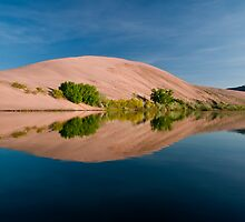 Bruneau Dunes Reflection by Albert Dickson