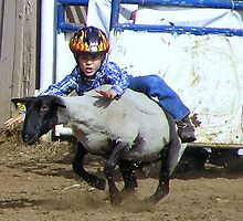 Mutton Bustin by Patty (Boyte) Van Hoff