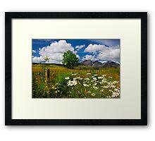 Blaven, and Summer Flowers, Torrin, Isle Of Skye, Scotland. Framed Print