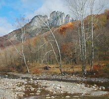 Seneca Rocks by Daniel Green