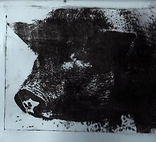 Celeste the Pig by Susan Grissom