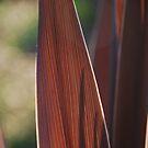 Stripes by Catherine Davis