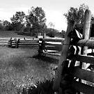 Split Rail Fence by jpryce