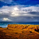 """""""At The Edge, In The Face Of A Storm"""" by Phil Thomson IPA"""