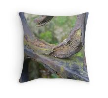 fine structure Throw Pillow