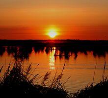 Sunrise over Oak Hammock Marsh by Larry Trupp
