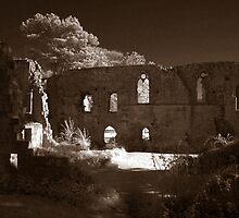 Jervaulx Abbey by cameron-shaw