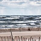 Sand And Surf by Maria Dryfhout
