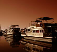 The Houseboat by reflector