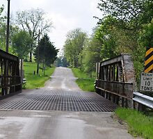 Old Bridge on a Back Country Road by mltrue